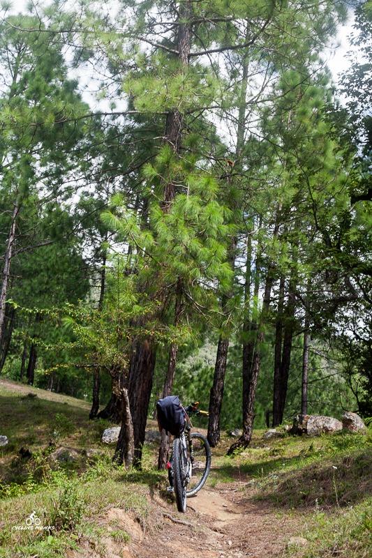 Trails in Garhwal