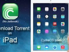 Download Torrent on iPad