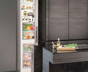 Szafa chłodnicza - najlepsza inwestycja dla branży gastronomicznej