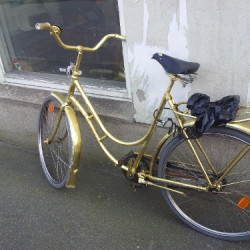 Guldcykel 500px