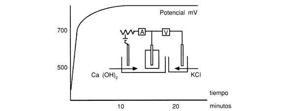Ensayo de oxidación acelerado de armadura embebida en mortero cementoso de reparación