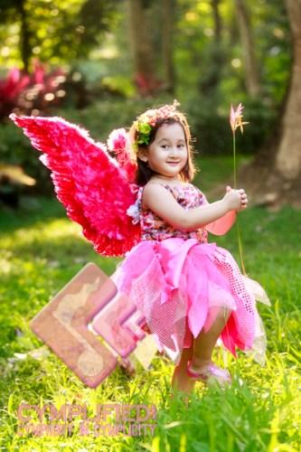 pink_fairy