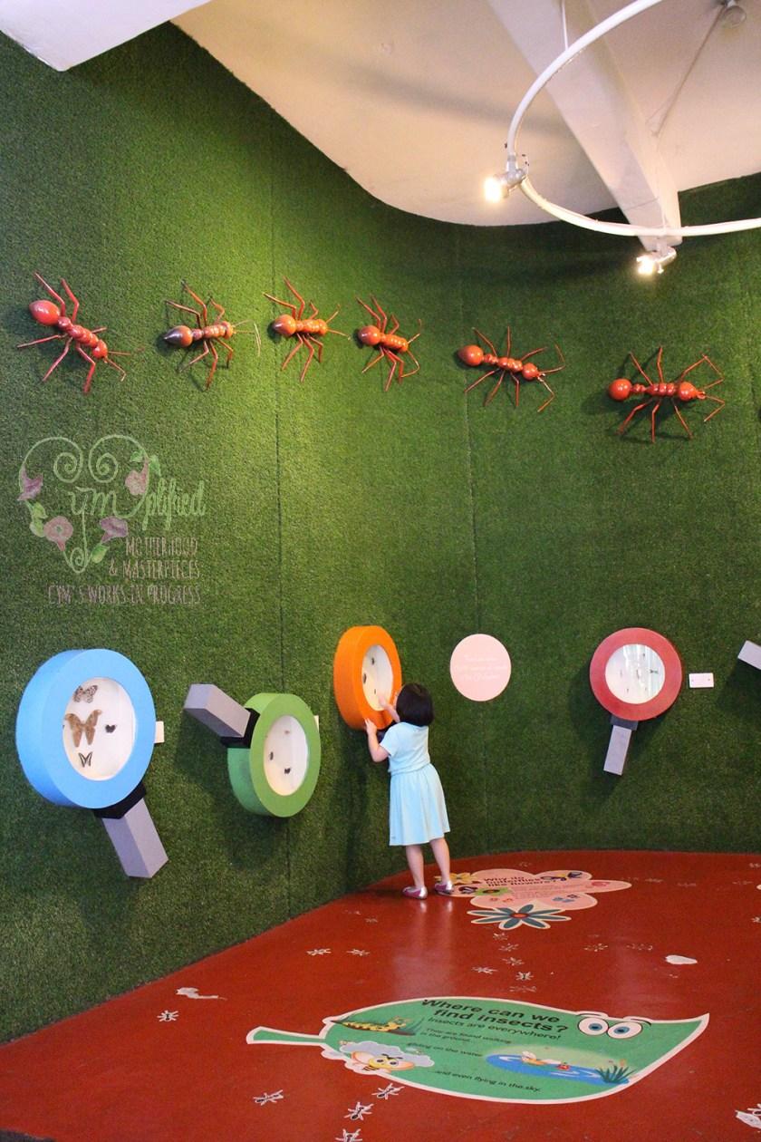 museo pambata insects