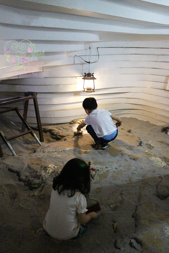 mind museum fossil dig