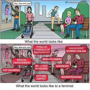 what-world-looks-like-to-a-feminist