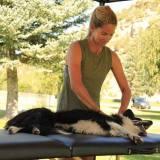 Monica massaging a dog