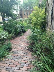 Path from Courtyard @ Bucktown House
