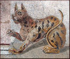 The Cat In Ancient Rome