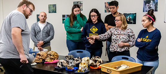 Students & professor looking at skulls on a table