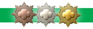 Girl Scouts' Bronze, Silver, and Gold awards. (GSUSA)