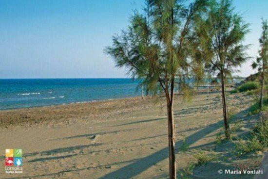 Kiti beach Parasolia Kareta