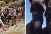 Διαδρομή Καμήλων και Γαϊδουριών