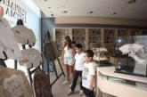 Μουσείο Παγκόσμιας Φυσικής Ιστορίας