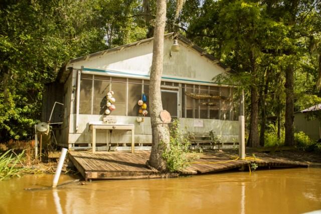 swamp homes0288