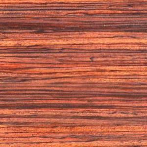 foresta-arancio