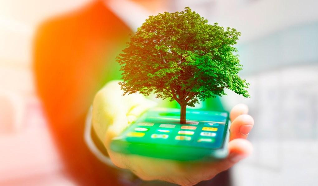 Celular ecologico-marketing