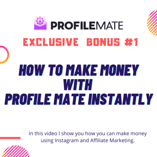 ProfileMate | Worlds #1 Instagram Fan Growth, Email building & Competitor domination software ever created. 6