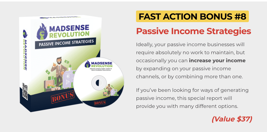 Madsense Revolution : How to get to 100,000 visitors per month and 6 figure income with 0 cost 11