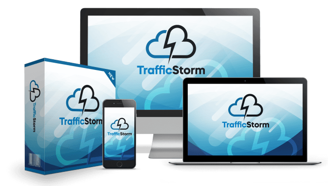 Traffic Storm Case Study : How to Earn $226.69 On Clickbank Overnight! 12