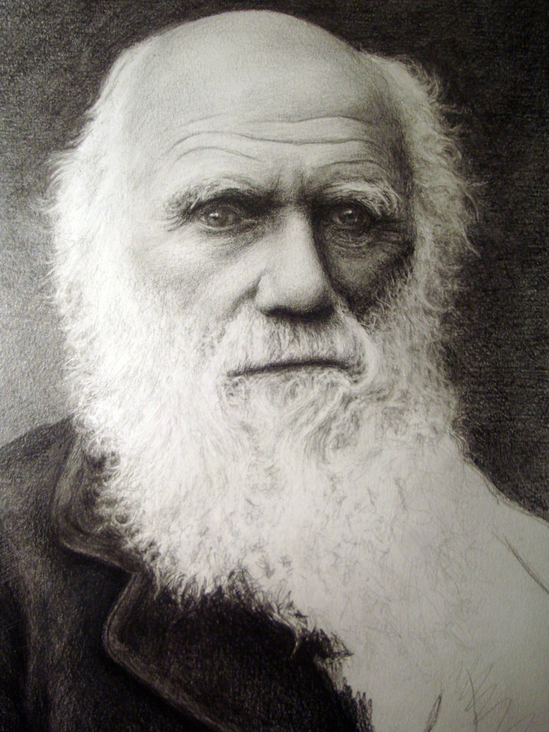 Charles Darwin:Powerful Legacy For Science And Art by ...