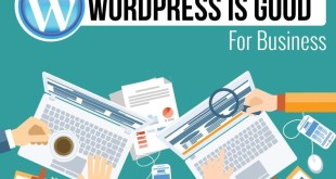 100 Reasons You Should Use WordPress For Your Business Website