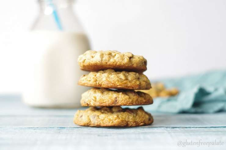 gluten-free-oatmeal-chocolate-chip-cookies-dapulse-recipe