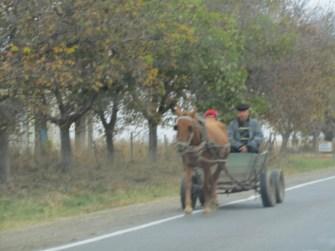 Moldawien 2015 (121)