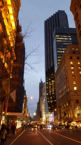 NYC New York City 2015 (28)