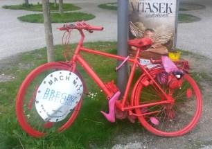 Lauterach und Bregenz 2015 (4)