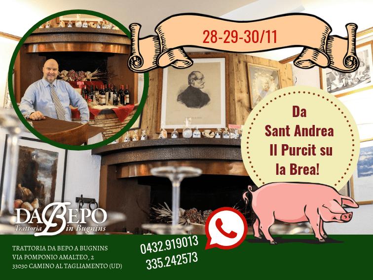 Visual 200x150 DA BEPO 8 28 29 30/11 Da Sant Andrea   Il Purcit su la Brea!