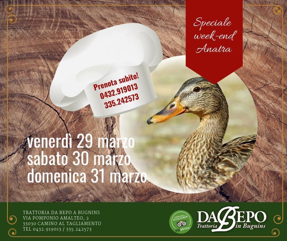 IMG 2627 Il weekend dellanatra: 29 30 31 marzo 2019   Da Bepo Bugnins