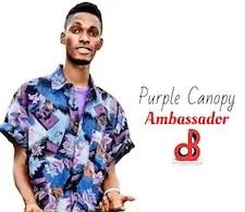 Purple Canopy