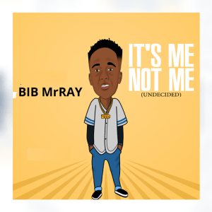 It_s Me Not Me Bib MrRay 480