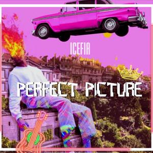 Perfect Picture - IceFia 480