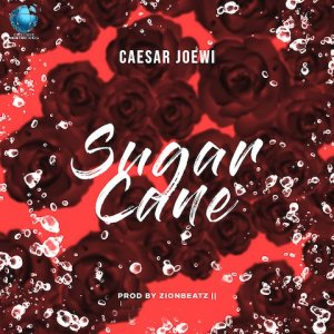 Sugar Cane - Caesar Joewi 480