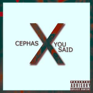 You Said - Cephas 480