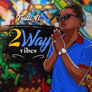2 Way Vibes - Trilli B 480