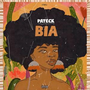 Bia - Pateck 480