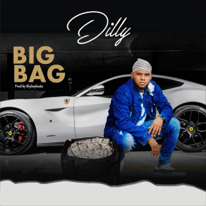Big Bag - Dilly 480