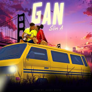 Gan - Slim A 480