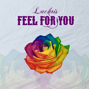 Feel For You - Lachris 480