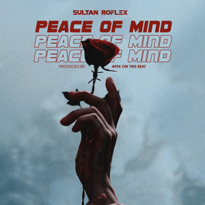 Peace of Mind - Sultan Roflex 480