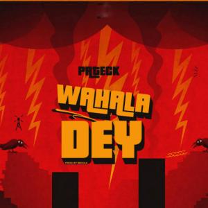 Wahala Dey - pateck