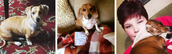 Hot Dog of the Month: Daisy