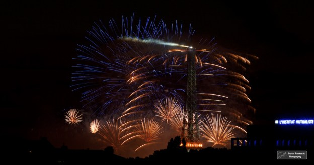Paris, 14 juillet 2014 (D.Stankovski)