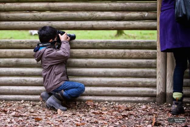 Kid 1.7 à l'affut derrière un point d'observation dans la foret des cerfs à l'Espace Rambouillet (D.Stankovski)