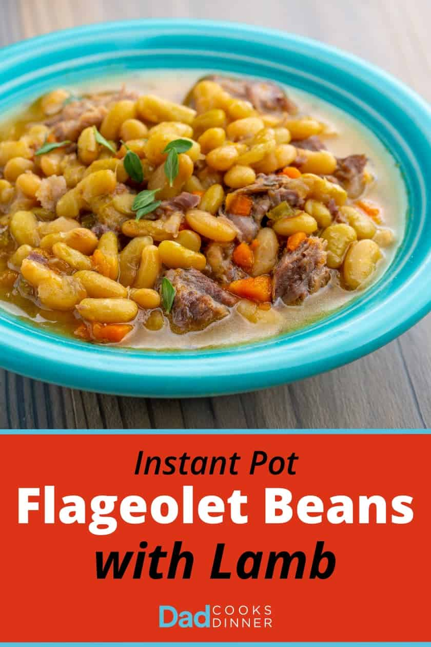 "A teal colored bowl of cooked flageolet bean stew with chunks of lamb and carrot, sprinkled with thyme, and the text ""Instant Pot Flageolet Beans with Lamb"" below it"