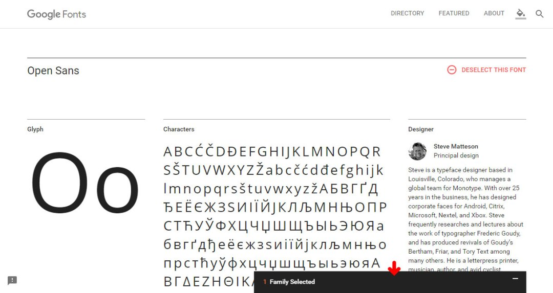 Google Font - Embed / Customize Tab