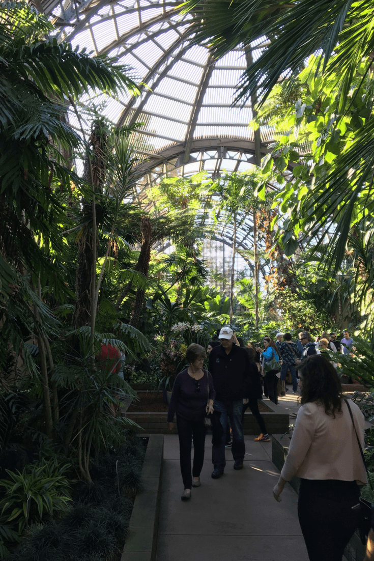 Image of the interior of the Balboa Botanical Garden building