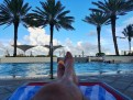A Shady Spot by the Pool - Hilton Ft. Lauderdale Beach Resort